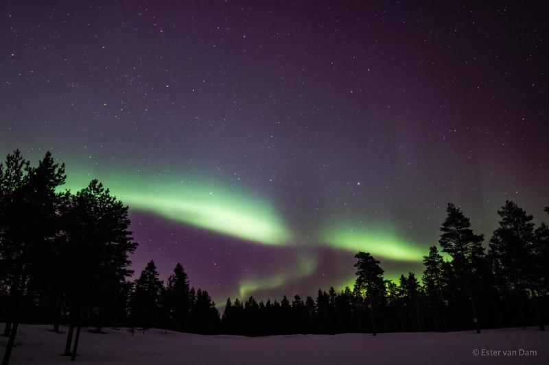 Aurora ,Oulu 28/03/2017