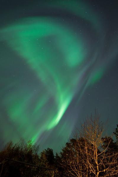 Northern Lights VII