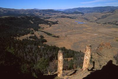 Specimen Ridge petrified trees and Little America.