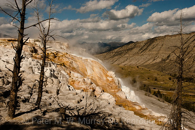 Upper Terrace at Mammoth Hot Springs. YNP.