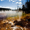 Canary Spring, Upper Terrace, Mammoth Hot Springs.