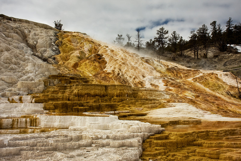 Lower Terrace, Wider View<br /> Mammoth Hot Springs