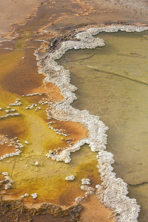 Detail from the edge of Black Pool II, West Thumb Geyser Basin, Yellowstone NP