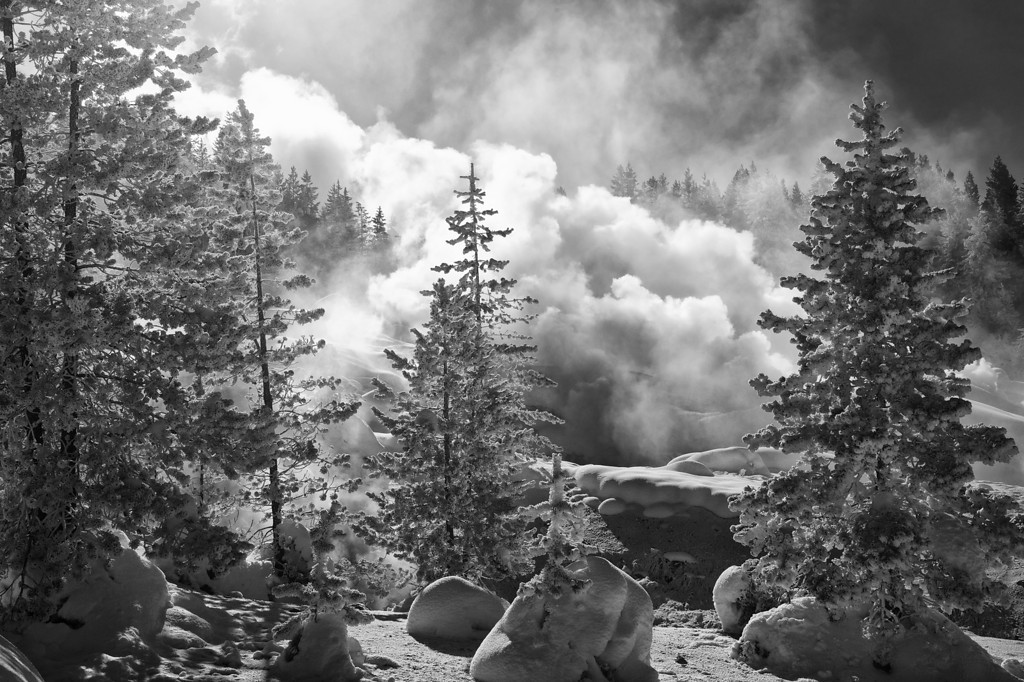 Backlighting on Ledge Geyser (BW), Porcelain Basin, Norris