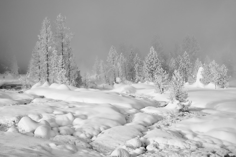 Interesting Light on West Thumb Geyser Basin (BW)
