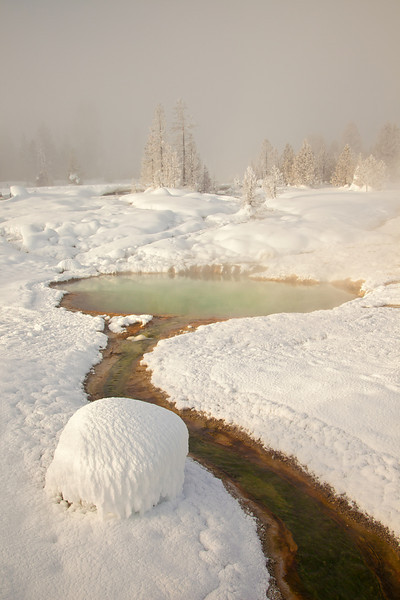 Sunrise Light at West Thumb Geyser Basin