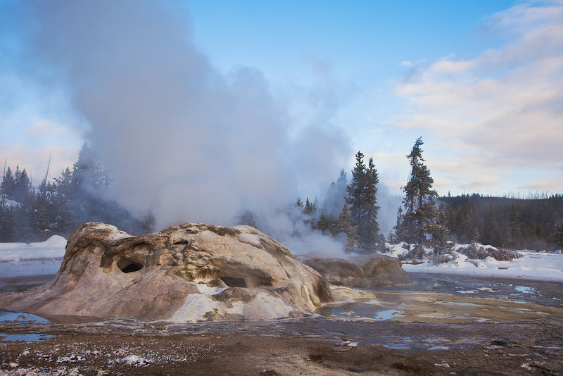 Grotto Geyser, Old Faithful Geyser Basin