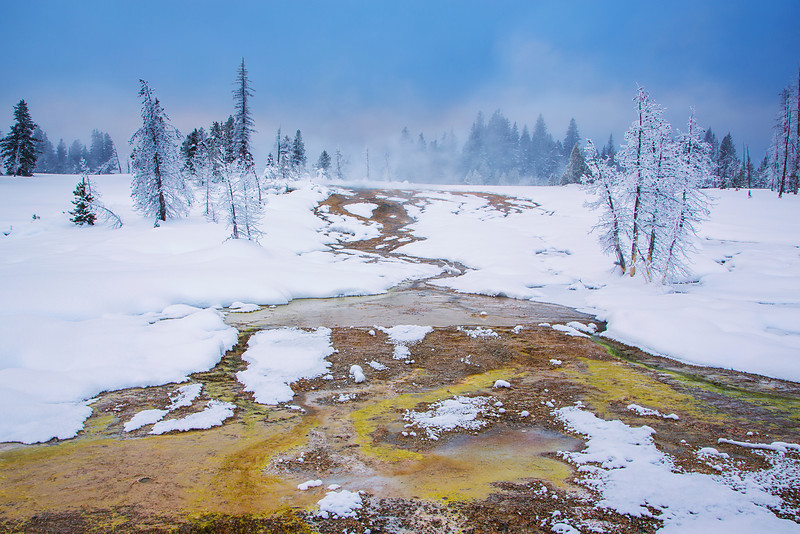 Geyser runoff and bacterial mat, West Thumb Geyser Basin, Yellowstone NP