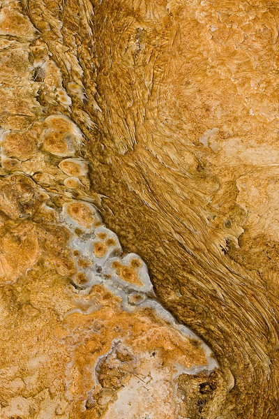 Mineral Deposit Detail 5<br /> Mammoth Hot Springs