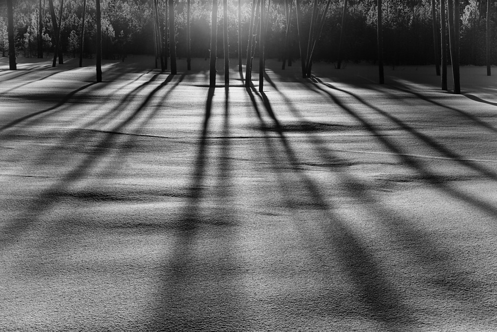 Light and Shadow, BW
