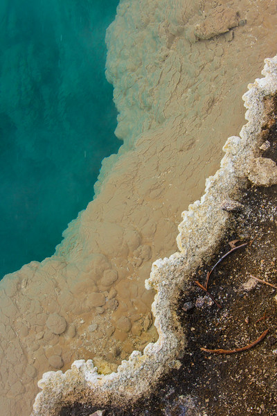 Detail from the edge of Black Pool, West Thumb Geyser Basin, Yellowstone NP