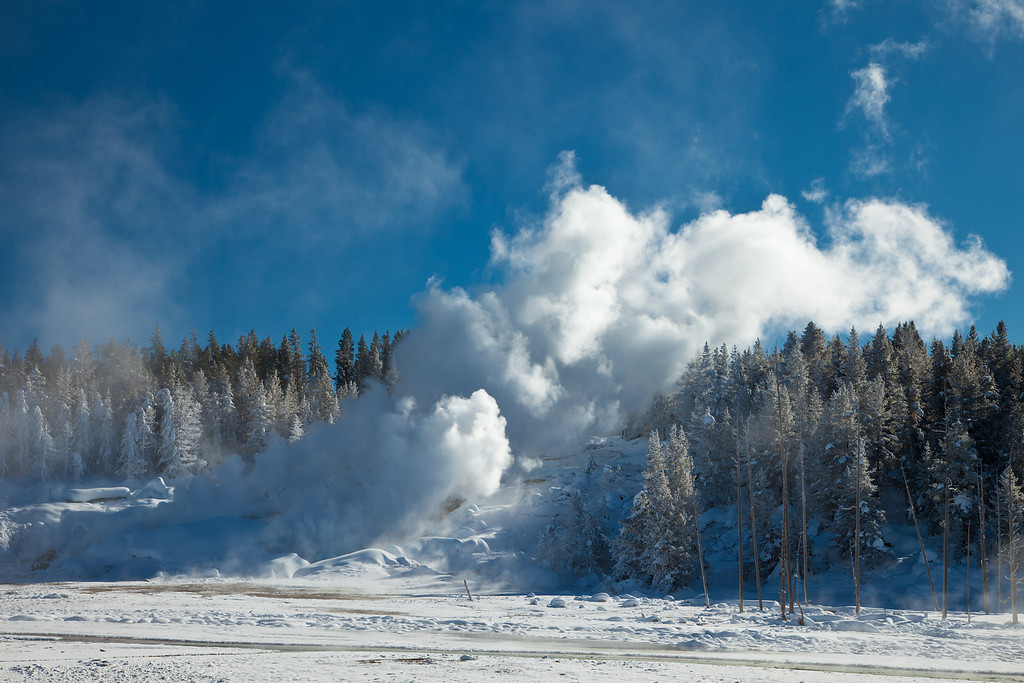 Steam from Ledge Geyser, Porcelain Basin, Norris