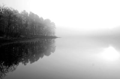 LakeWedFog009