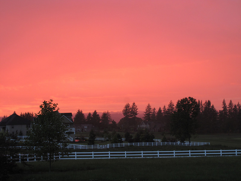 "Another amazing northwest sunset. April 2010<br /> ""The Mist""<br /> This was natural, no photoshop. I have never seen a pink sky, but hope to see again..<br /> Even the reflection was pink on the patio across the way.."