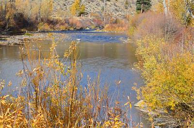 P00024_DSC_0071_Truckee_River