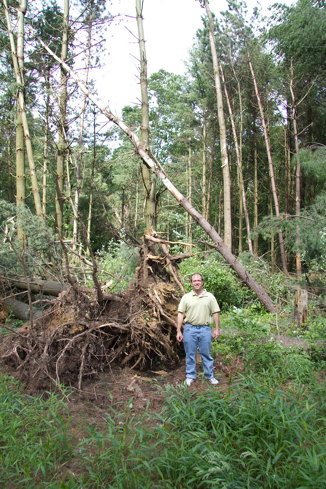 Me along Jeffers Rd, just south of the horse center. I thought it would be interesting to compare the size of the roots on this tree to me.  Some of the trees were uprooted and some were snapped in half.