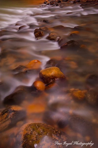 Peanut Brittle Abstract