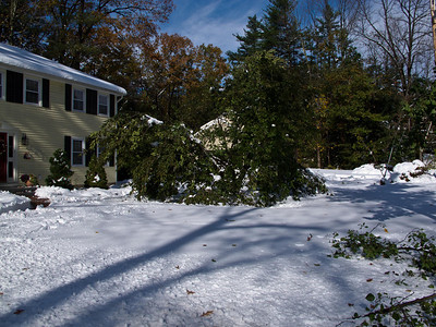 October 2011 Nor'Easter Damage