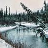 Murray River near Tumbler Ridge, BC.