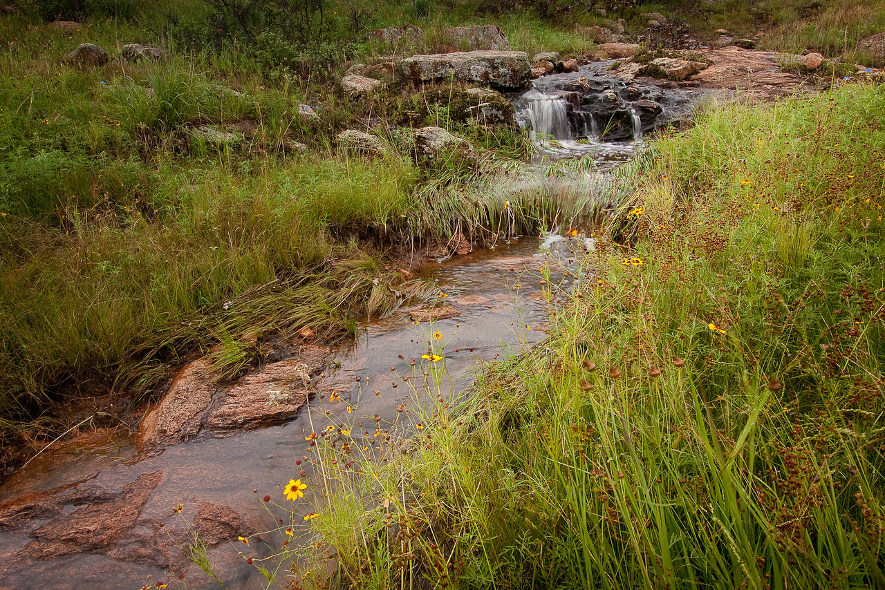 The early morning rain filled small streams flowing into Post Oak Lake in the Charon's Garden area of Wichita Mountains WMA.