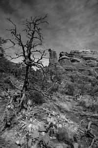Lone Vigil, Sedona, AZ