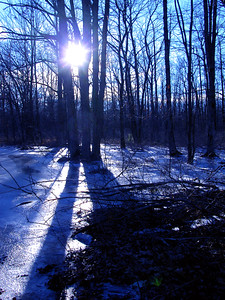 Winter Sunset, Conrad Weiser SF, Poconos
