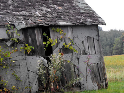Old barns,,a town on the river,,
