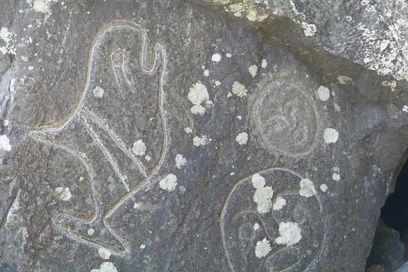 I love this petroglyph of the whale