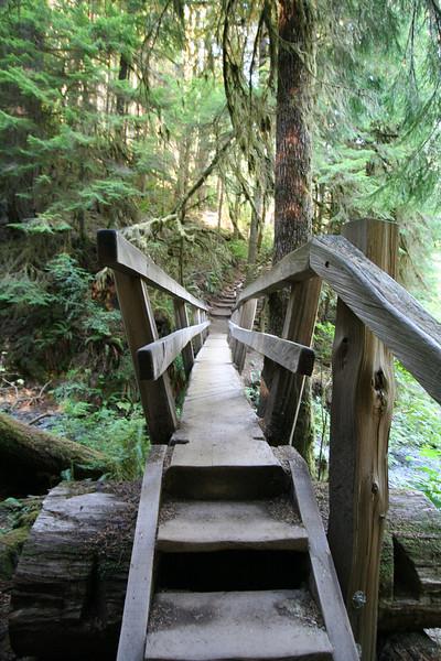 A bridge crossing Barnes Creek along the Marymere Falls trail