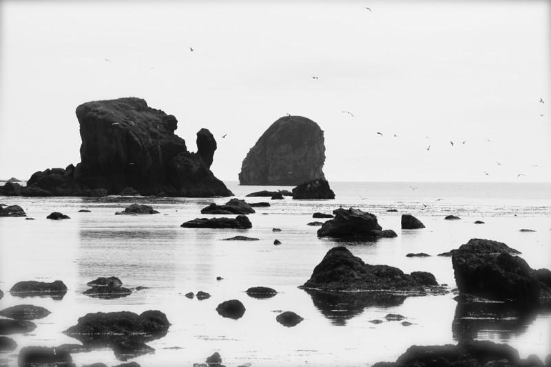 Sea stacks guard the WA coast