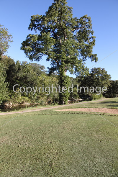 Onion Creek 076