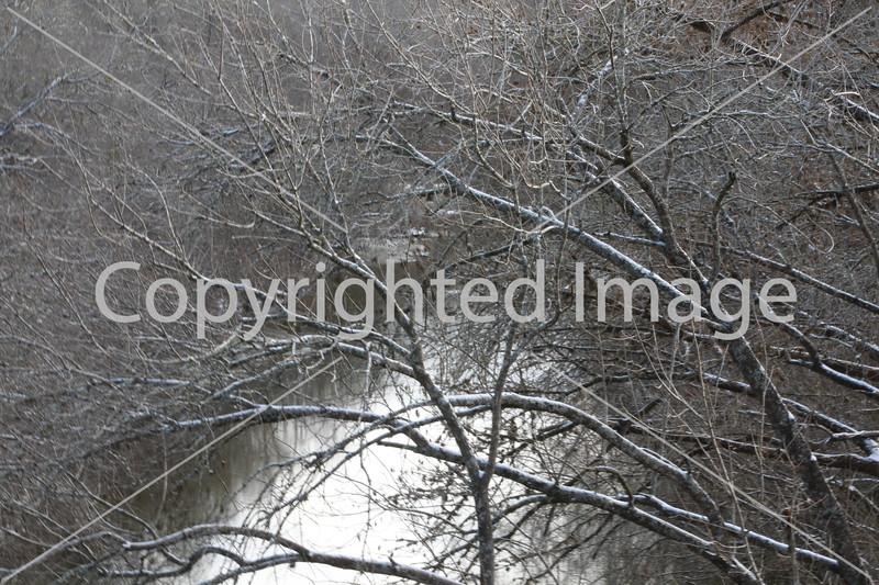 Winter 026