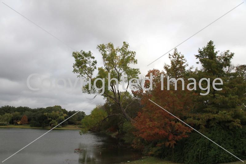 Onion Creek 122
