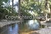 Onion Creek 092