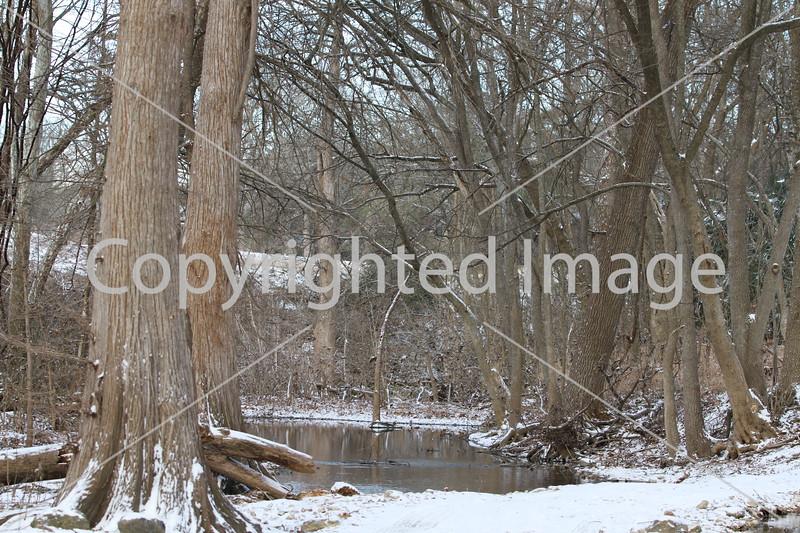 Winter 009
