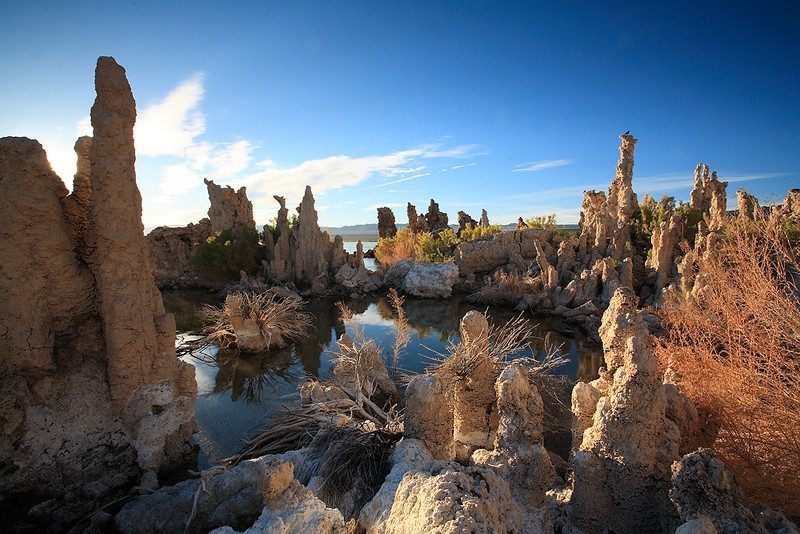 Mono Lake is an alkaline and hypersaline lake in California, United States that is a critical nesting habitat for several bird species[1] and is an unusually productive ecosystem.[2]