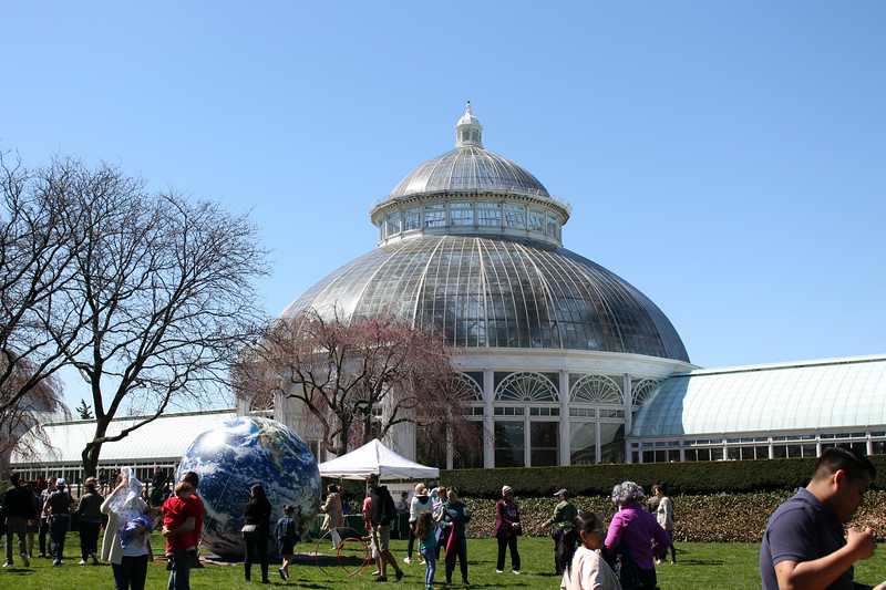 Earth Day at the Orchid Show at The New York Botanical Garden