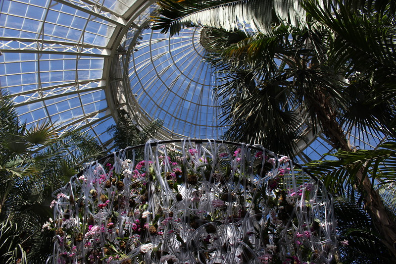 Installations by Belgian Floral Artist Daniel Ost
