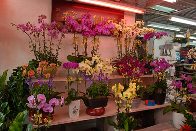 © Joseph Dougherty. All rights reserved.   Shelves of blooming orchids for sale at the Hong Kong flower market.