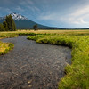 Sparks lake marsh and river