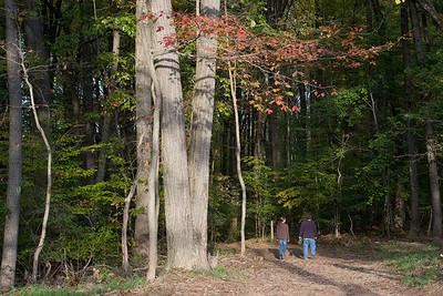 Oregon Ridge Park Hiking Trail