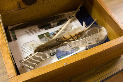 Discovery Box and Feathers