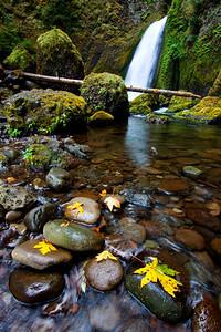 Wahclella Falls near Bonneville Dam, Columbia River Gorge, OR  Print size 5 x 7 $14.00 USD 8 x 10 $20.00 USD 8 x 12 $20.00 USD 11 x 14 $28.00 USD 12 x 18 $35.00 USD 16 x 20 $50.00 USD