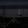 RYC Osprey @ night-3
