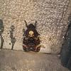Ghost Moth<br /> Budapest<br /> September 2001