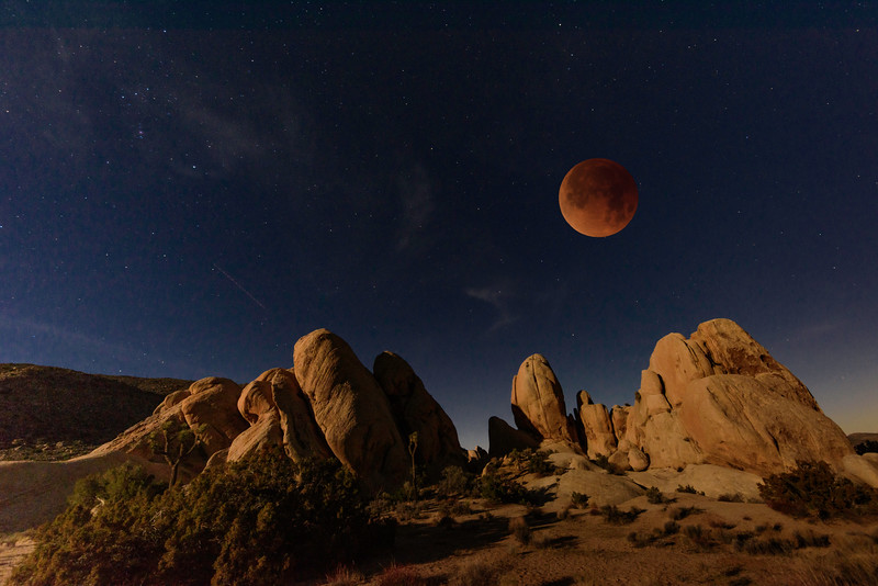 Super Blue Blood Moon Eclipse, Joshua Tree National Park
