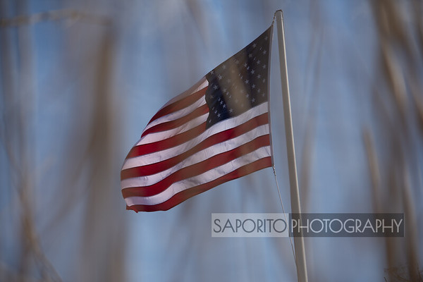 Flag in Marsh Grass