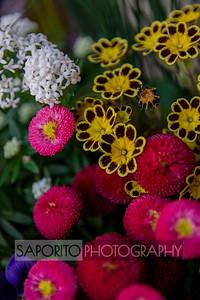 Beacon Hill Flower Box