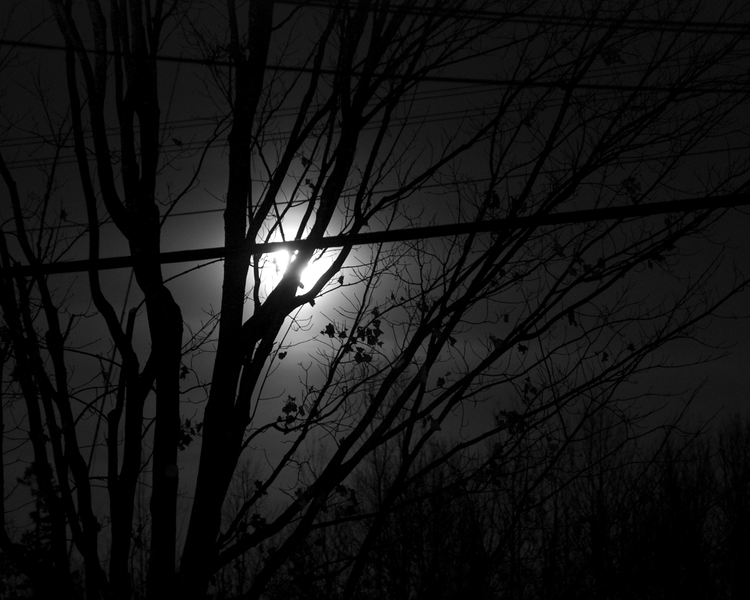 Shot from the back door of my house near midnight on 2 March, 2010.  Nikon D80.