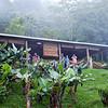 """Foggy mornings at the """"Finca"""". Finca Esperanza Verde"""